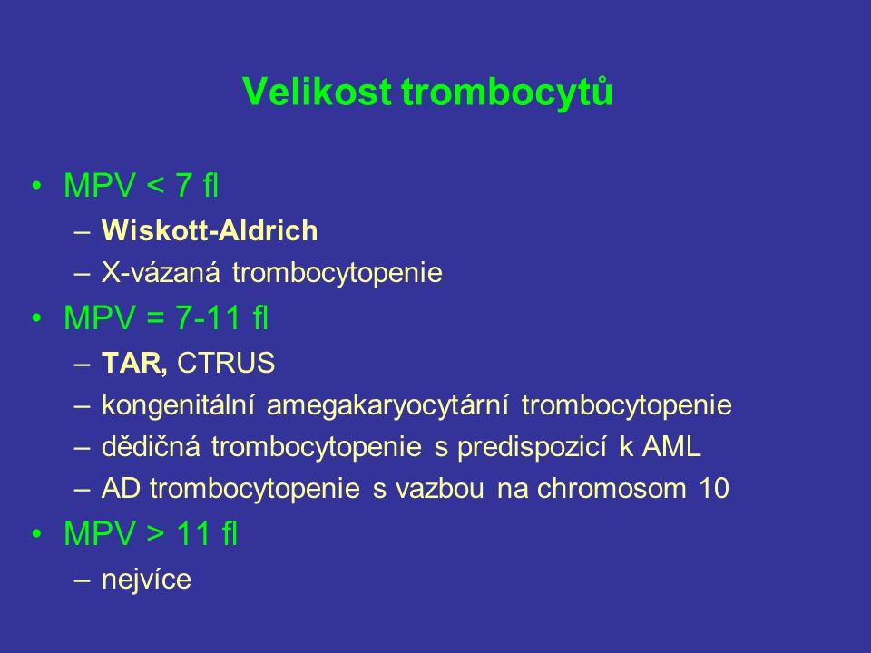 Velikost trombocytů MPV < 7 fl MPV = 7-11 fl MPV > 11 fl