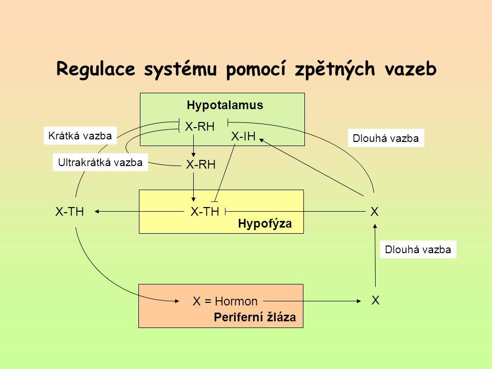 Regulace systému pomocí zpětných vazeb