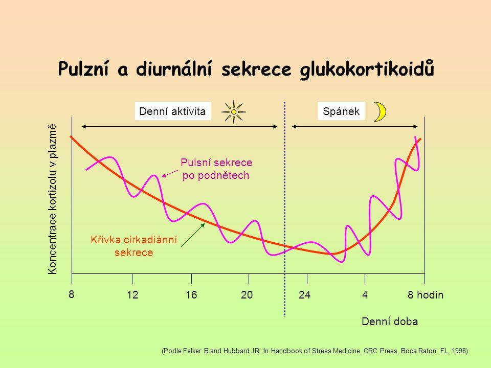 Pulzní a diurnální sekrece glukokortikoidů