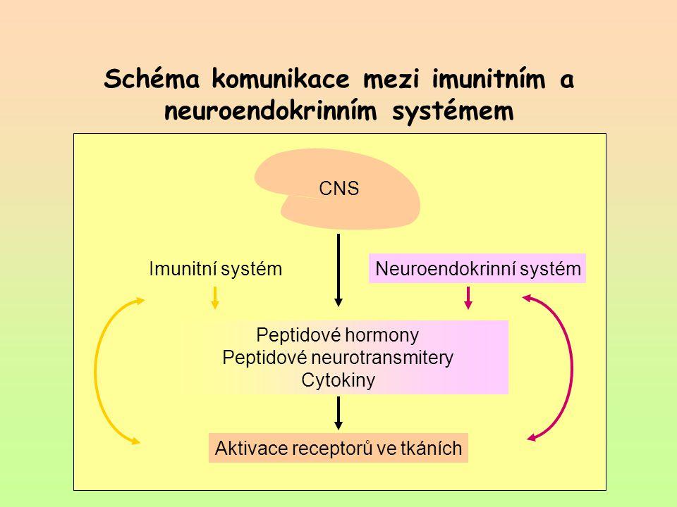 Schéma komunikace mezi imunitním a neuroendokrinním systémem