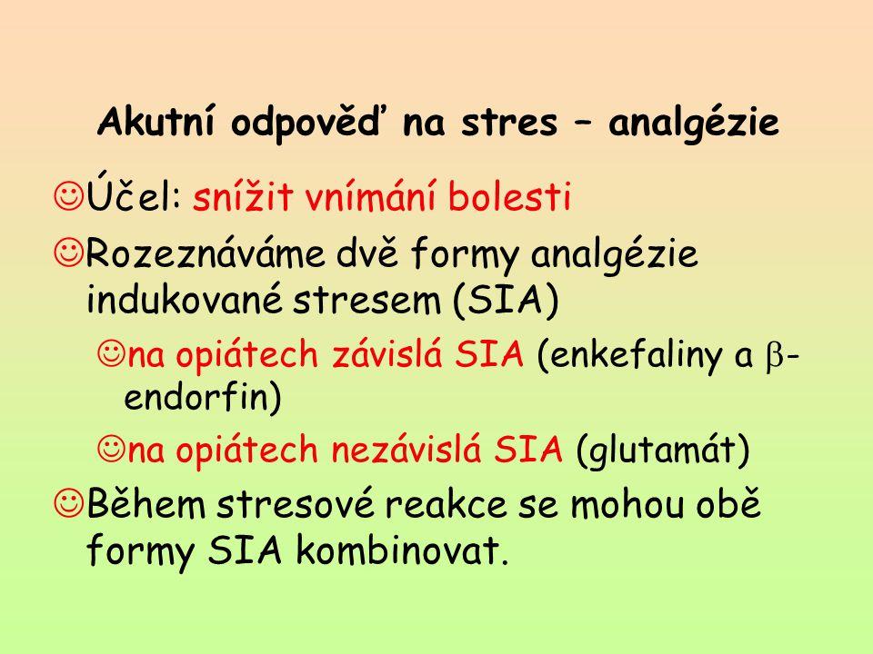 Akutní odpověď na stres – analgézie