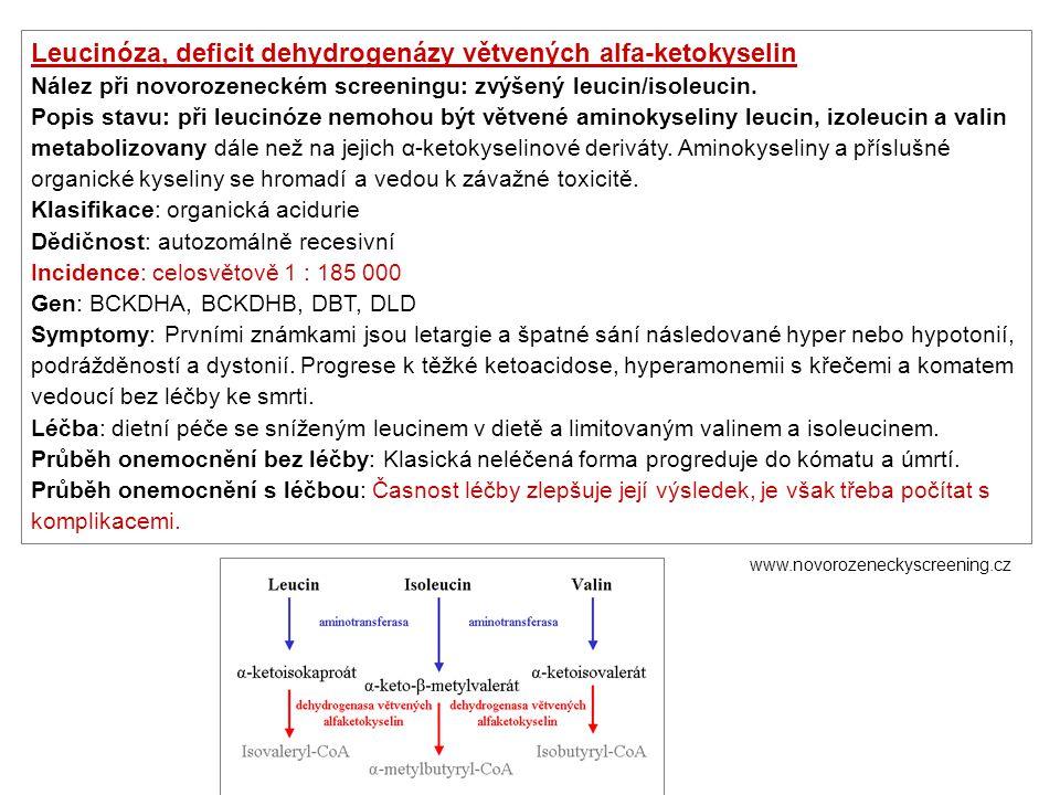 Leucinóza, deficit dehydrogenázy větvených alfa-ketokyselin