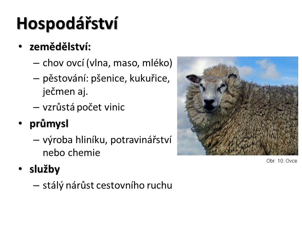 Hospodářství zemědělství: průmysl služby chov ovcí (vlna, maso, mléko)