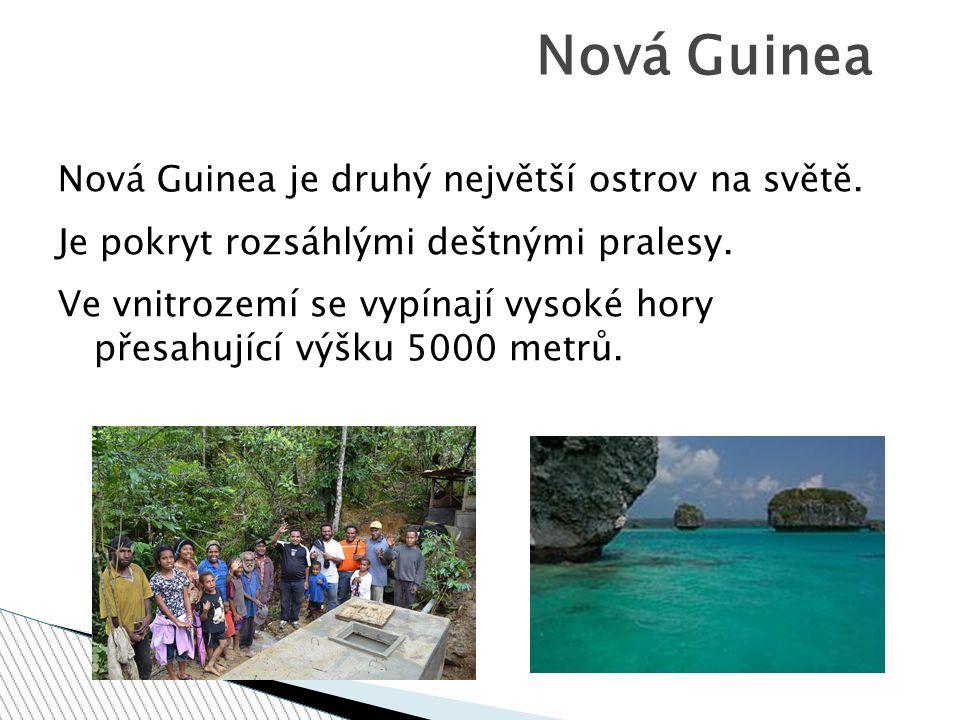 Nová Guinea Nová Guinea je druhý největší ostrov na světě.
