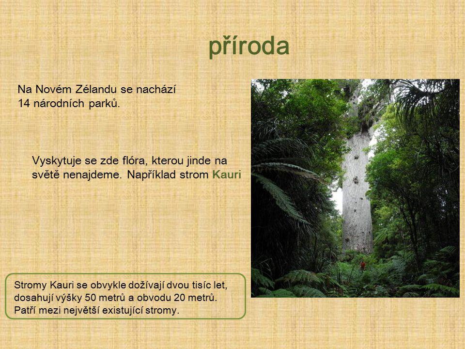 příroda Na Novém Zélandu se nachází 14 národních parků.