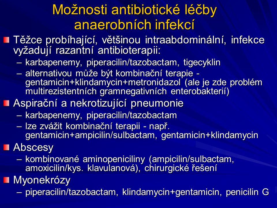Možnosti antibiotické léčby anaerobních infekcí