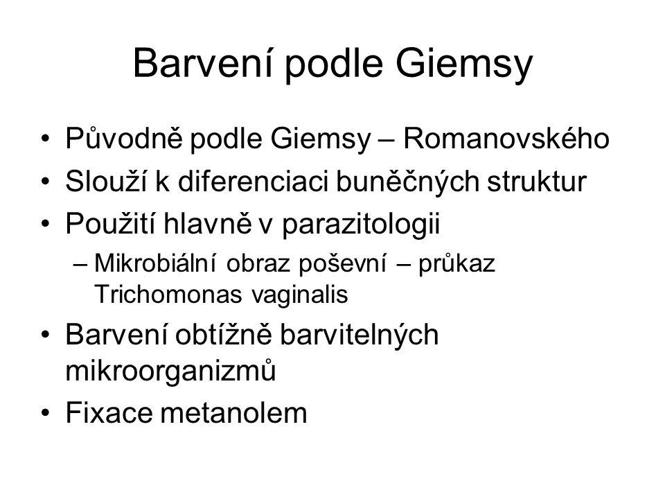 Barvení podle Giemsy Původně podle Giemsy – Romanovského