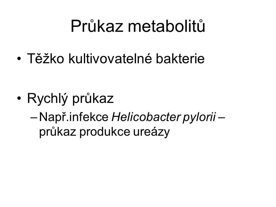 Průkaz metabolitů Těžko kultivovatelné bakterie Rychlý průkaz