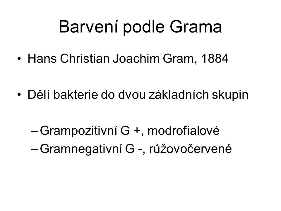 Barvení podle Grama Hans Christian Joachim Gram, 1884