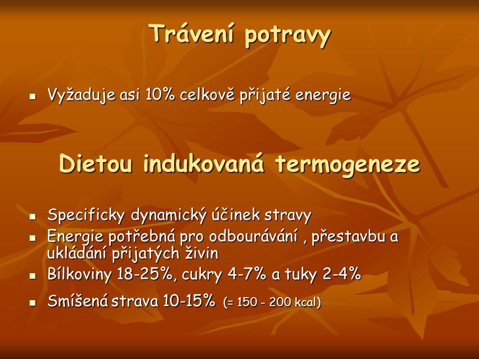 Dietou indukovaná termogeneze