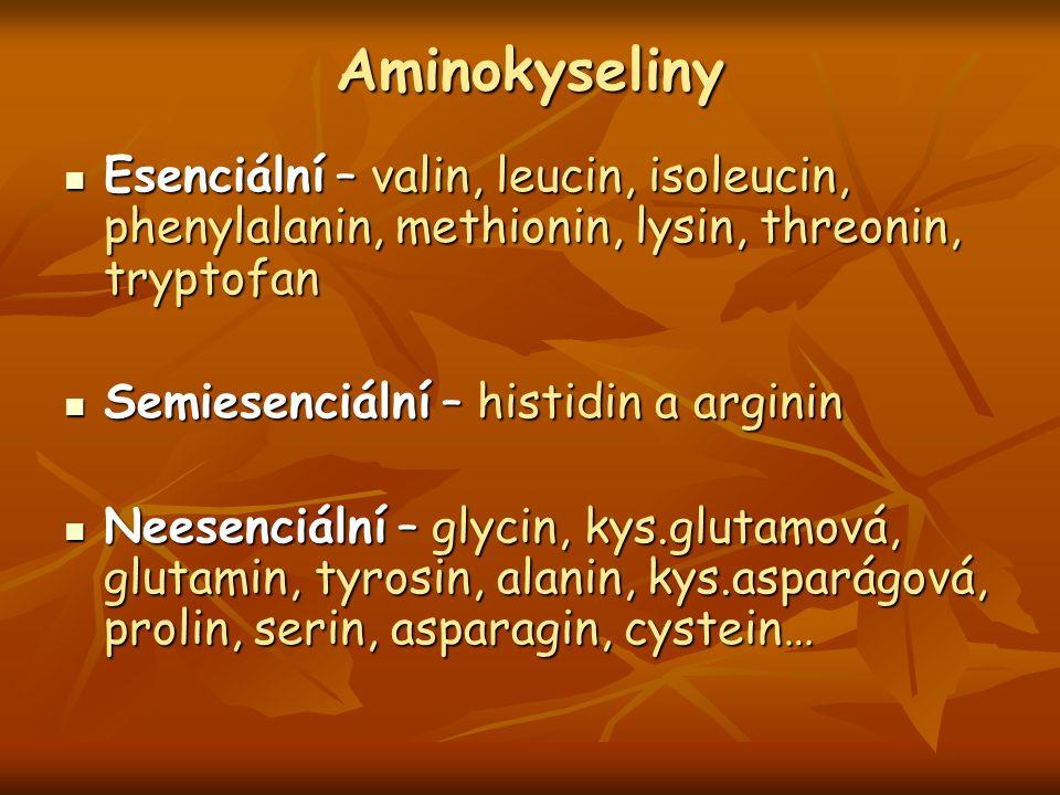 Aminokyseliny Esenciální – valin, leucin, isoleucin, phenylalanin, methionin, lysin, threonin, tryptofan.