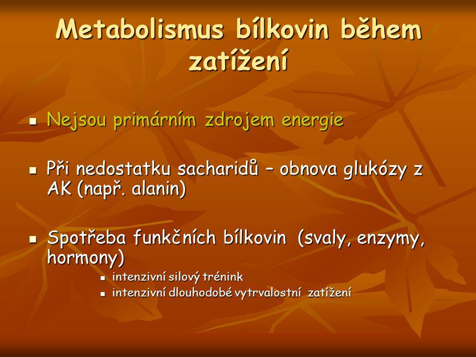 Metabolismus bílkovin během zatížení