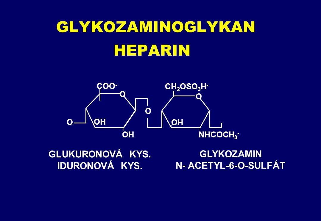 GLYKOZAMINOGLYKAN HEPARIN