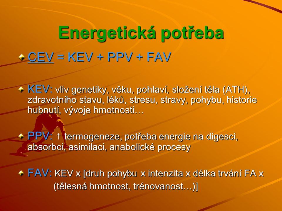 Energetická potřeba CEV = KEV + PPV + FAV