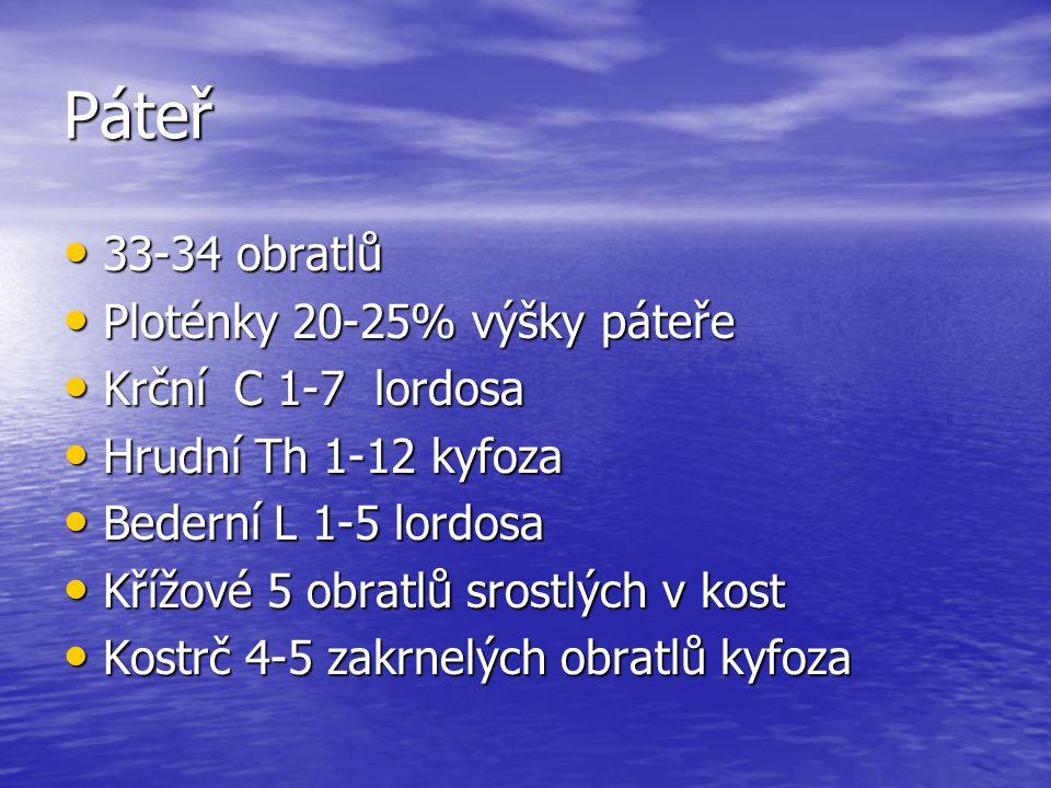 Páteř 33-34 obratlů Ploténky 20-25% výšky páteře Krční C 1-7 lordosa