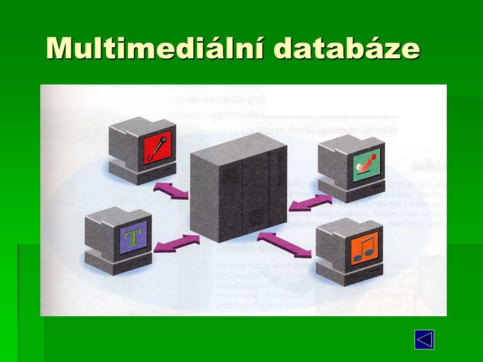 Multimediální databáze