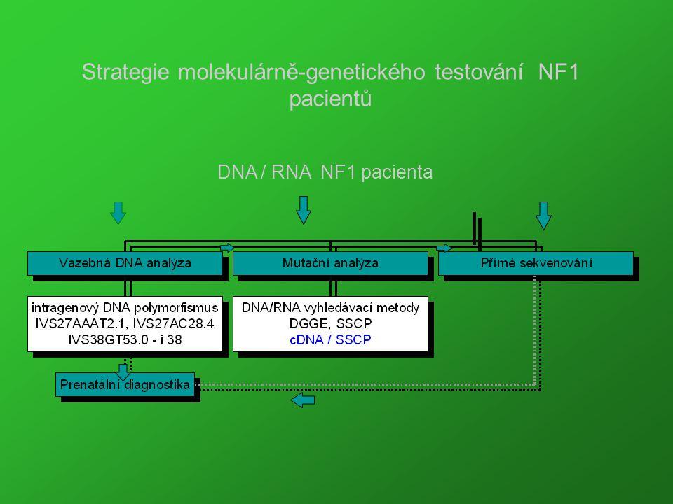 Strategie molekulárně-genetického testování NF1 pacientů