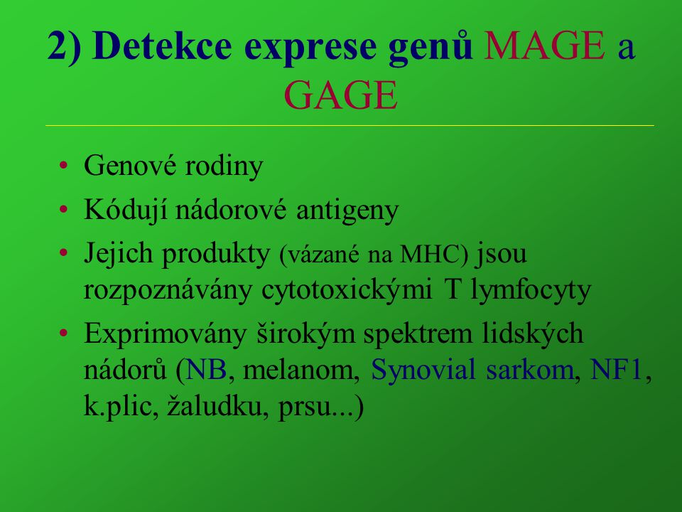 2) Detekce exprese genů MAGE a GAGE