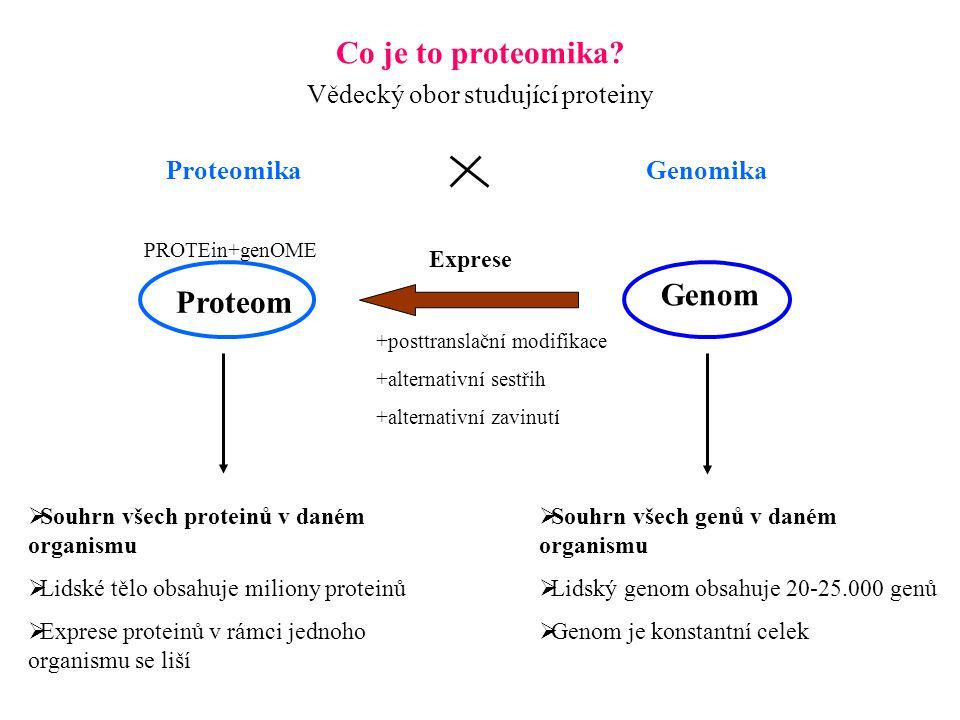 Vědecký obor studující proteiny