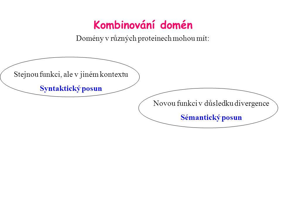 Kombinování domén Domény v různých proteinech mohou mít: