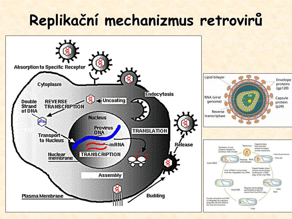 Replikační mechanizmus retrovirů