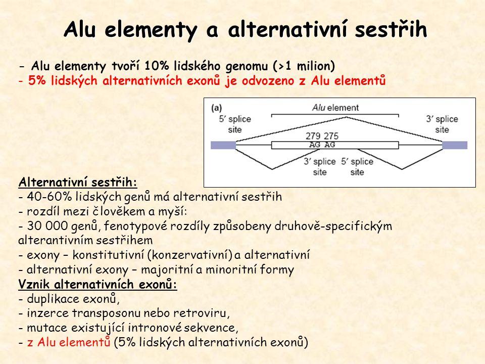Alu elementy a alternativní sestřih