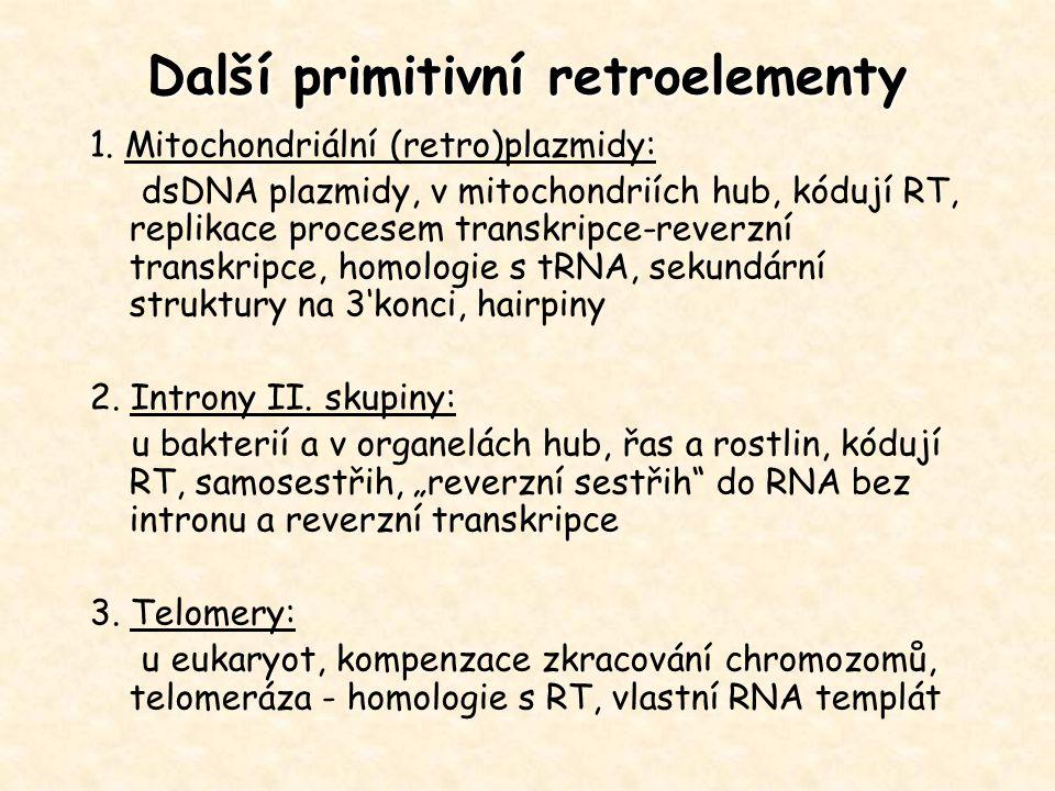 Další primitivní retroelementy