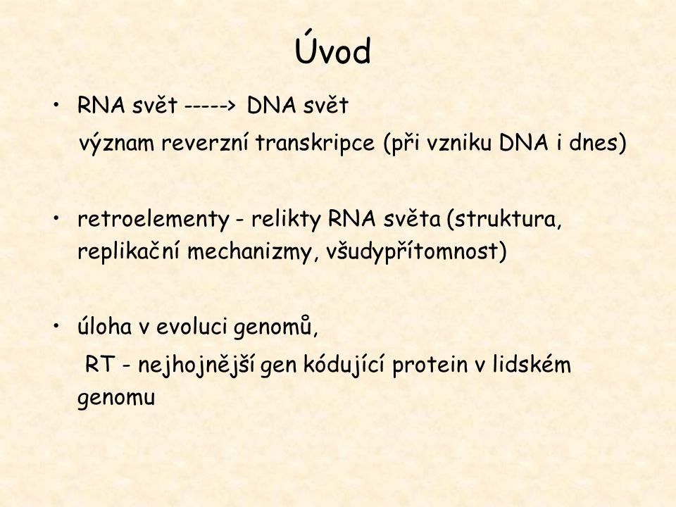 Úvod RNA svět -----> DNA svět