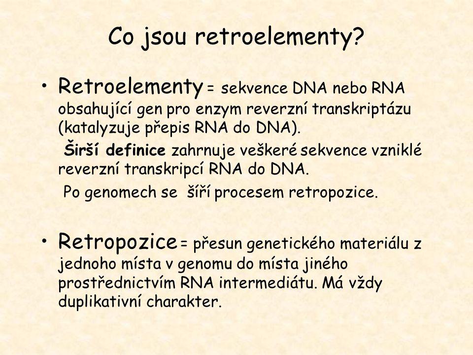 Co jsou retroelementy Retroelementy = sekvence DNA nebo RNA obsahující gen pro enzym reverzní transkriptázu (katalyzuje přepis RNA do DNA).