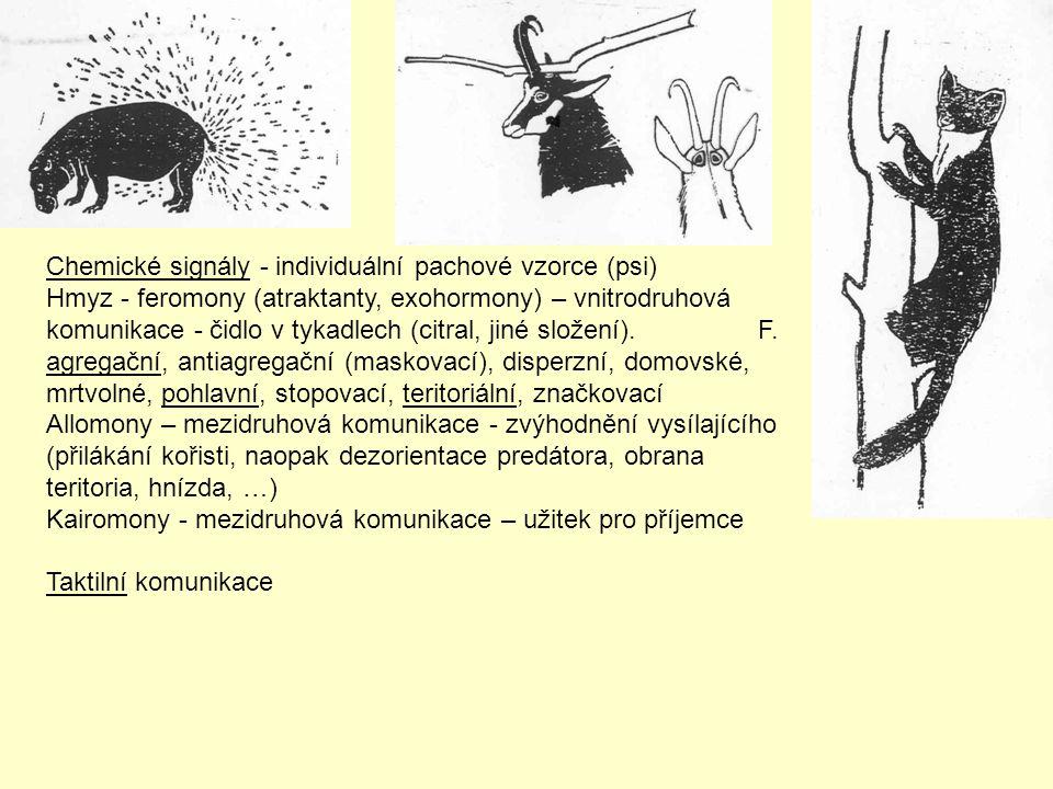 Chemické signály - individuální pachové vzorce (psi)