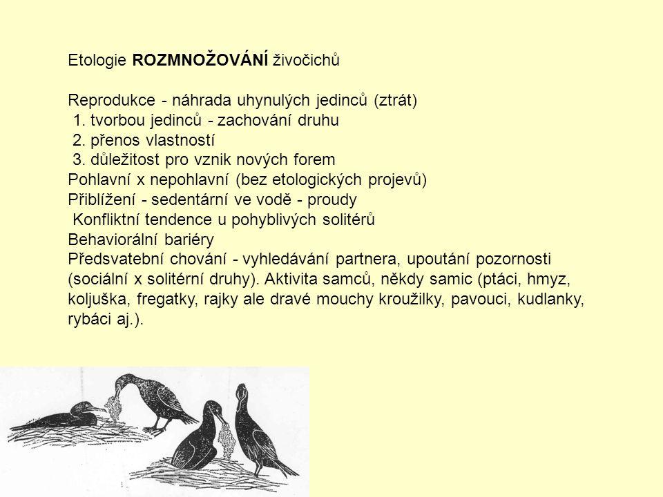 Etologie ROZMNOŽOVÁNÍ živočichů