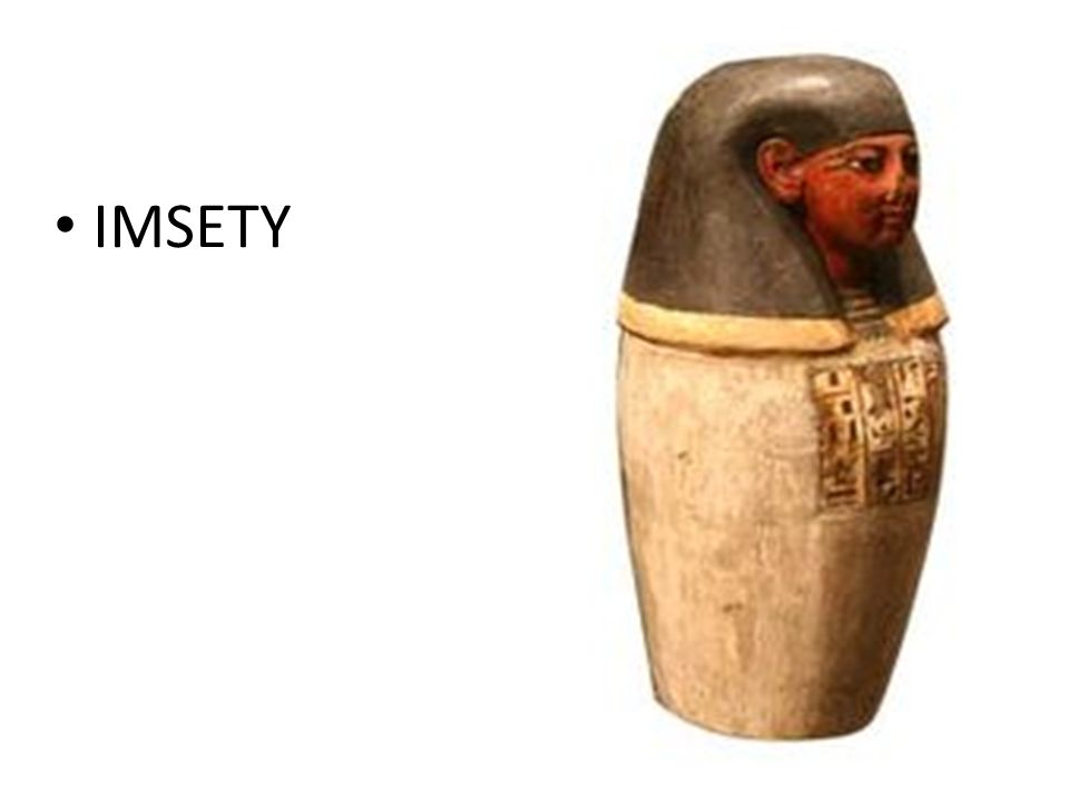 IMSETY