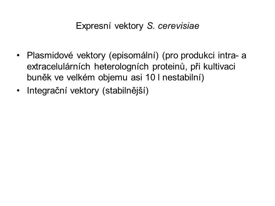 Expresní vektory S. cerevisiae