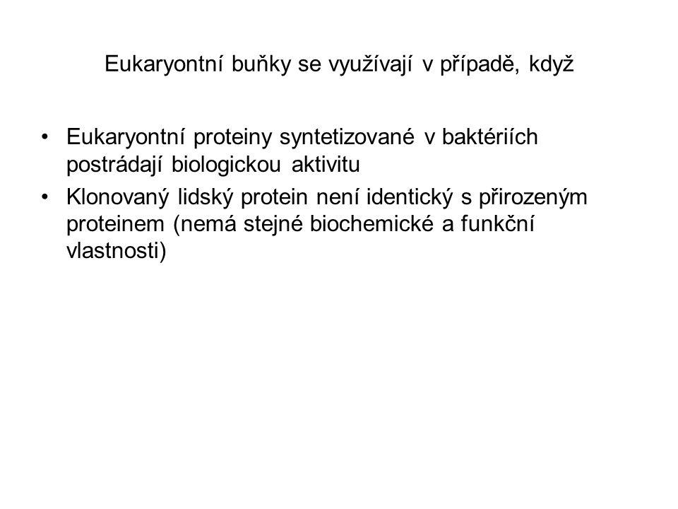 Eukaryontní buňky se využívají v případě, když