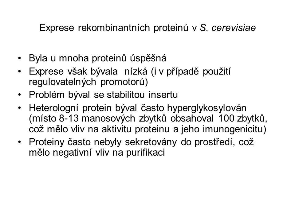 Exprese rekombinantních proteinů v S. cerevisiae