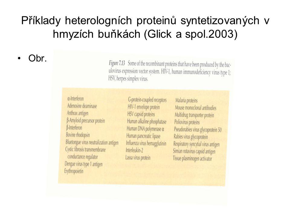 Příklady heterologních proteinů syntetizovaných v hmyzích buňkách (Glick a spol.2003)