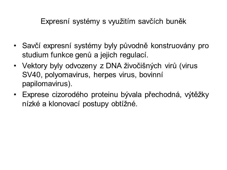 Expresní systémy s využitím savčích buněk