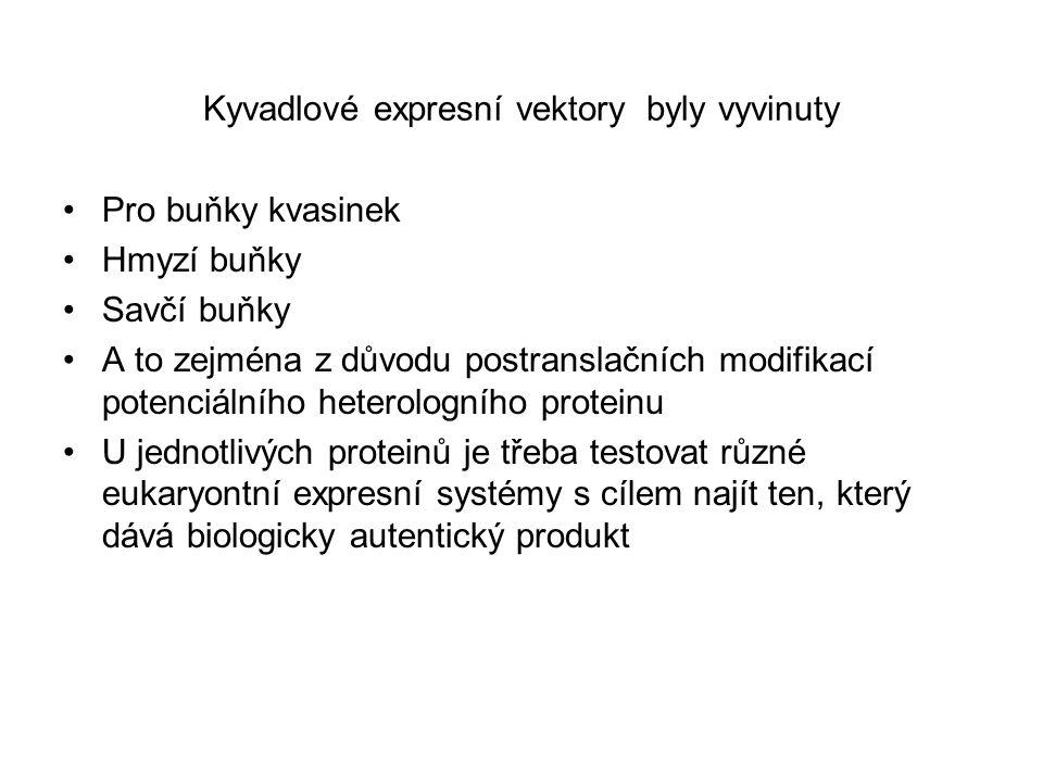 Kyvadlové expresní vektory byly vyvinuty