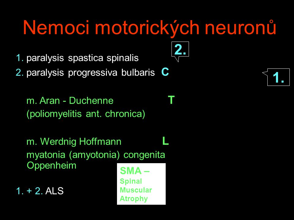 Nemoci motorických neuronů