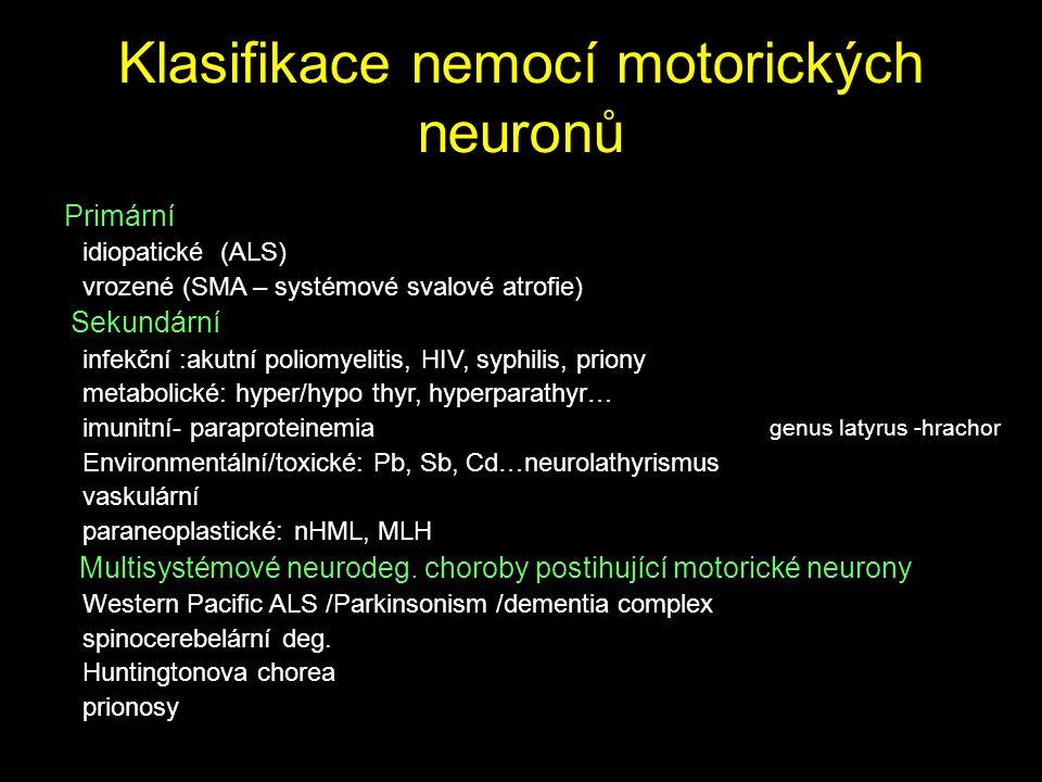 Klasifikace nemocí motorických neuronů
