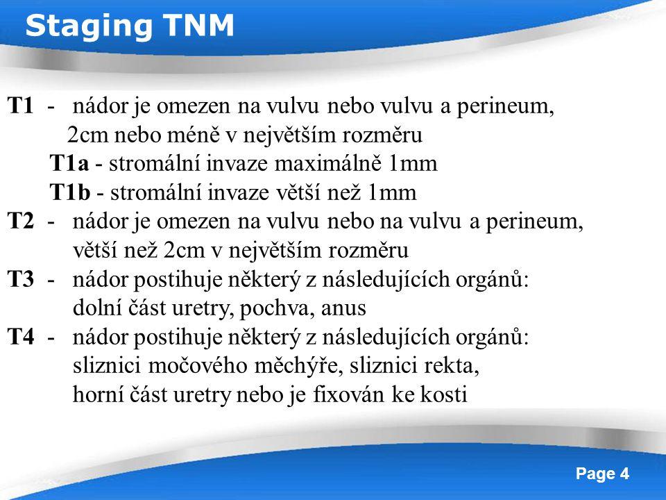 Staging TNM T1 - nádor je omezen na vulvu nebo vulvu a perineum,