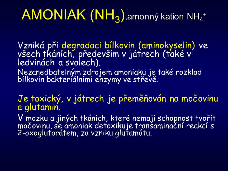 AMONIAK (NH3),amonný kation NH4+