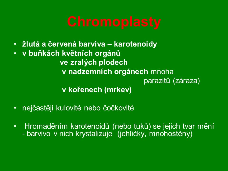 Chromoplasty žlutá a červená barviva – karotenoidy
