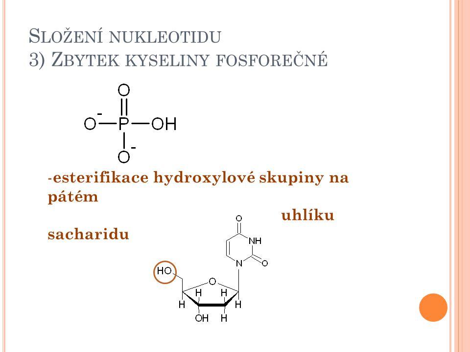 Složení nukleotidu 3) Zbytek kyseliny fosforečné