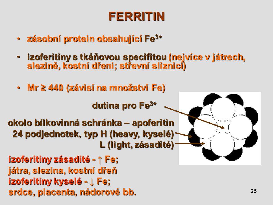 FERRITIN zásobní protein obsahující Fe3+