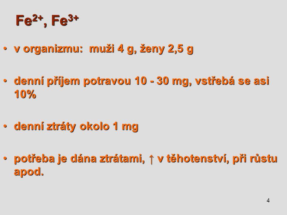 Fe2+, Fe3+ v organizmu: muži 4 g, ženy 2,5 g