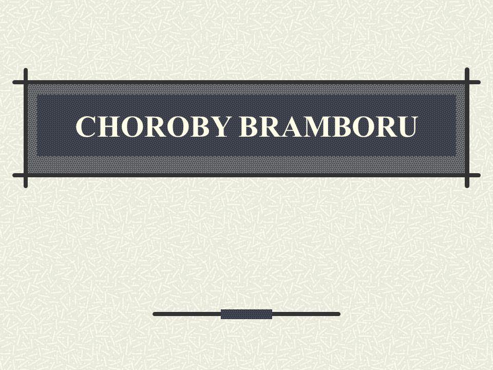 CHOROBY BRAMBORU