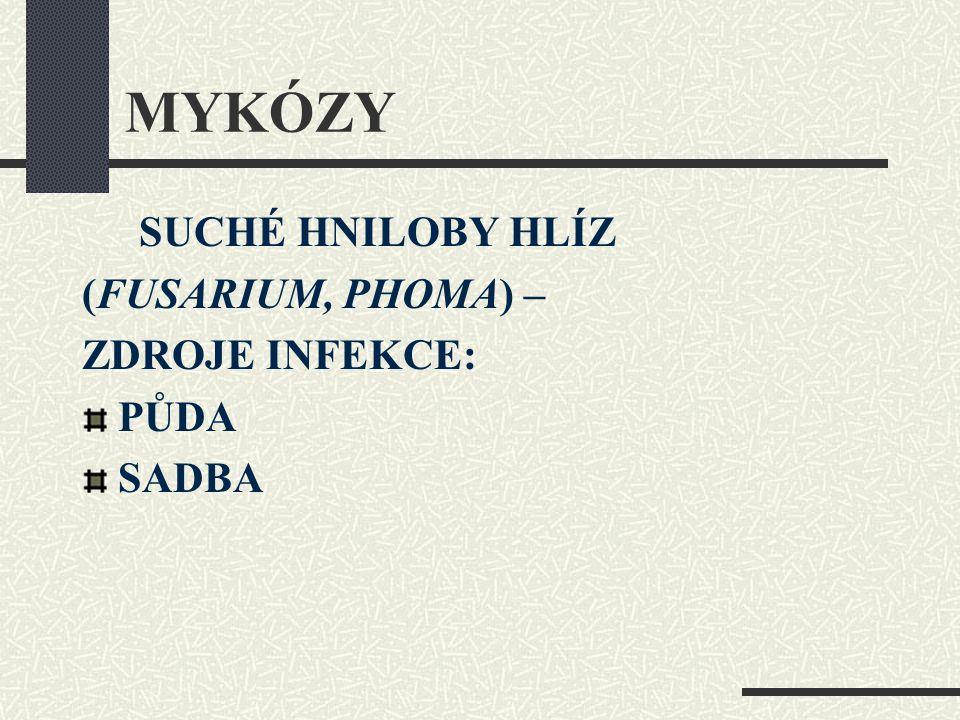 MYKÓZY (FUSARIUM, PHOMA) – ZDROJE INFEKCE: PŮDA SADBA