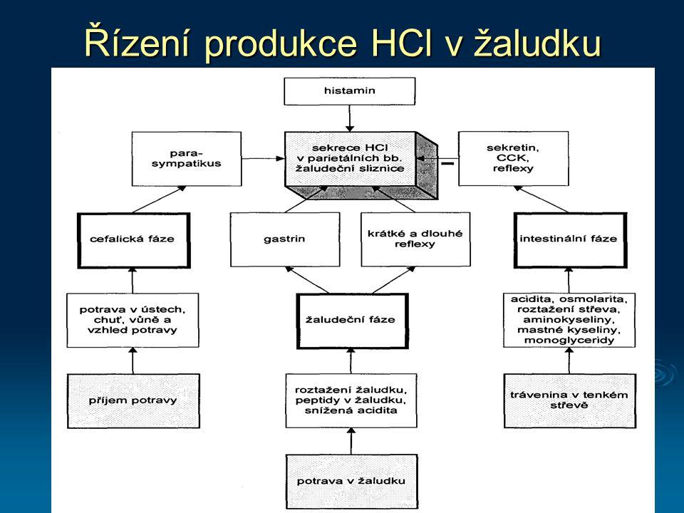 Řízení produkce HCl v žaludku
