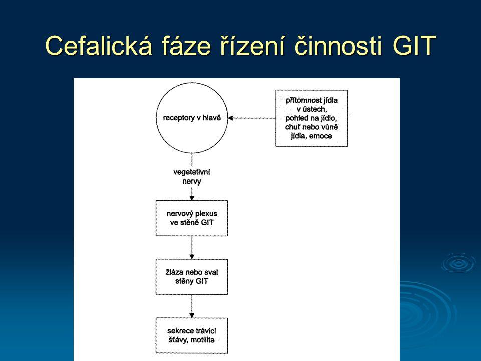 Cefalická fáze řízení činnosti GIT